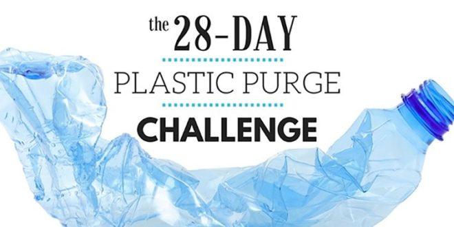 Plastic Purge Challenge In 28 Days