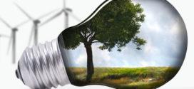 Enviro-Friendly Business Ideas